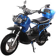 """NEW! ICE BEAR 50cc Moped Scooter with 12"""" Big Tires Fully Automatic Free Rear Trunk (PMZ50-10)"""