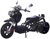 "ICE BEAR ""MADDOG"" 50cc Street Bike with 12"" Big Tires Fully Automatic (PMZ50-19)"